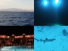 0610_hurghada-collage1
